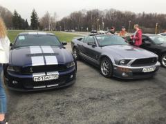 Mustang Birthday №55 08.jpeg
